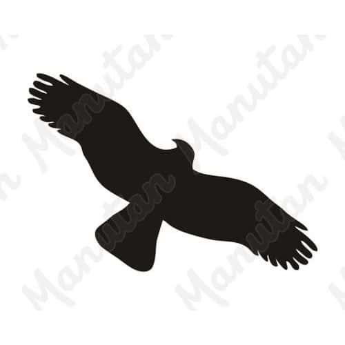 Információs táblák - Ragadozó madár körvonala